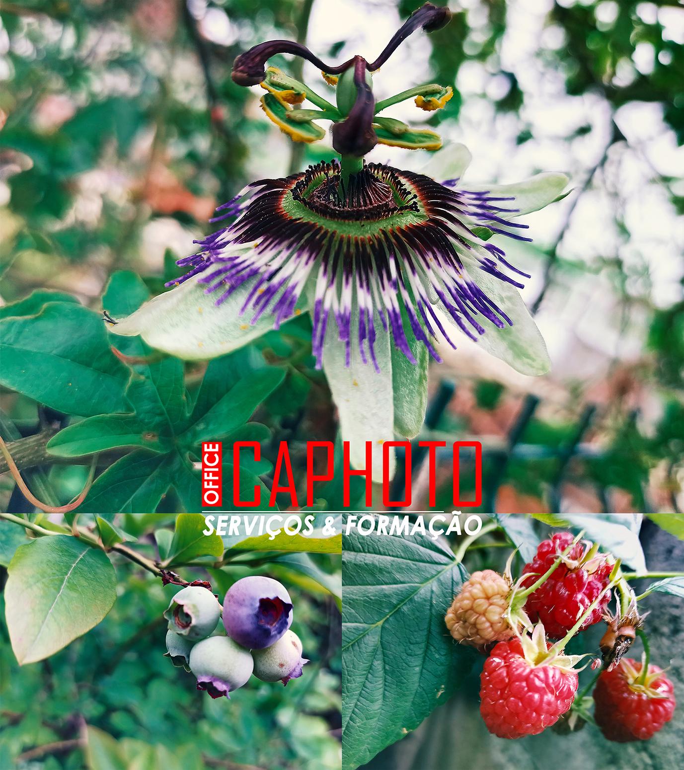 """2 JUN.2021 - Renovação I """"Escape Happy Hour de Fotografia by..."""""""