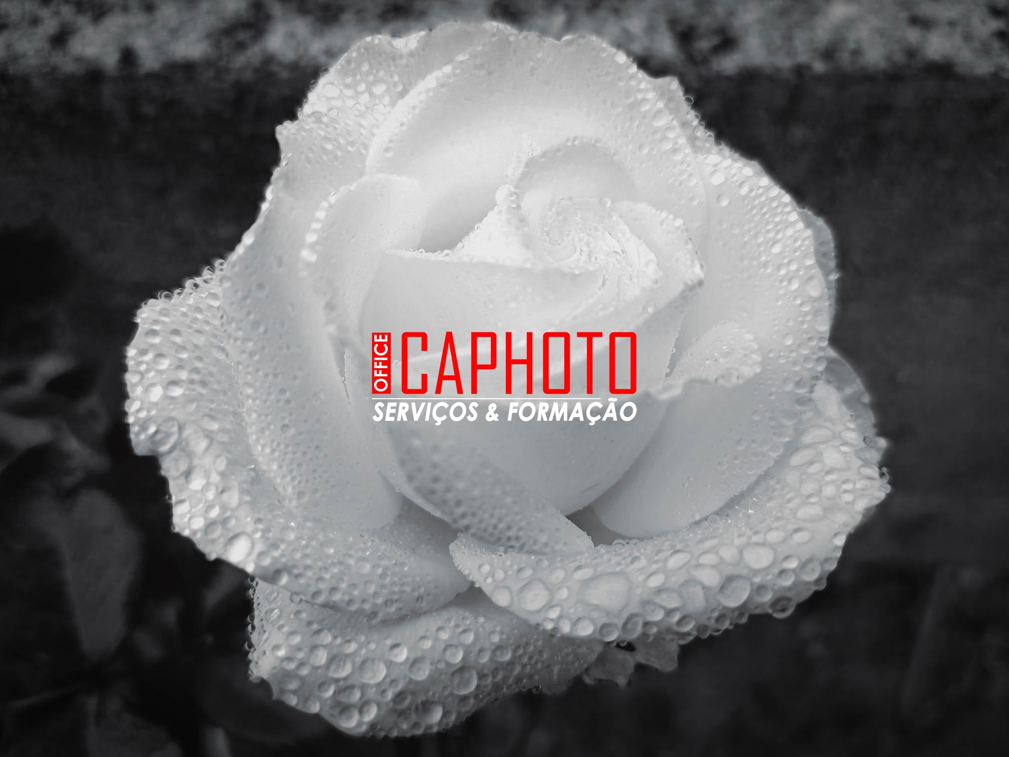 """20 JUL.2021 - Renovação I """"Escape Happy Hour de Fotografia by..."""""""